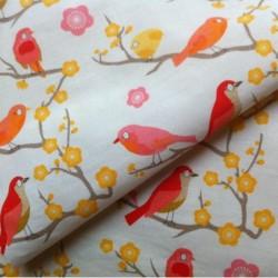 Madame Mo - Petits oiseaux