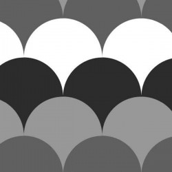 Jersey bio doris gris