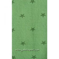 Bord-côte étoiles vert