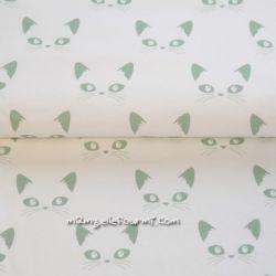 Jersey bio chats menthe sur blanc