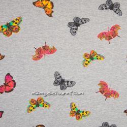 Molleton gris papillons