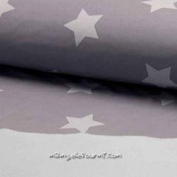 Softshell imprimé étoiles gris/gris