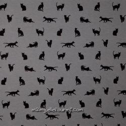 Molleton chats gris