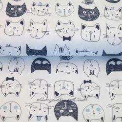 Jersey bio cats blanc/bleu