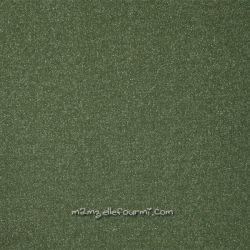 Sweat vert lurex argent