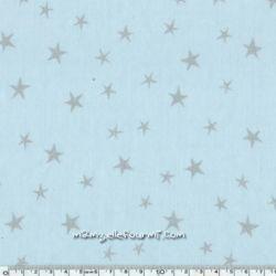 Imprimé constellation glaçon encre argent