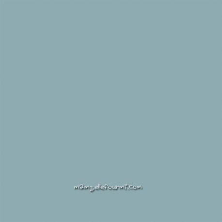 Sweat/molleton bleu/gris