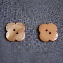Bouton fleur marron