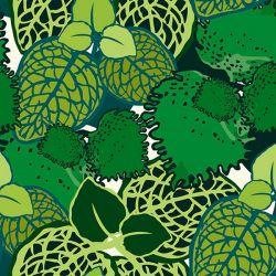 Jersey bio aderblad blanc