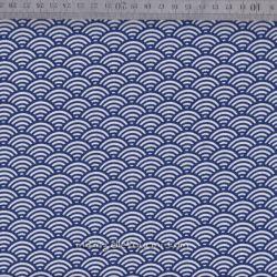 Enduit sushis bleu