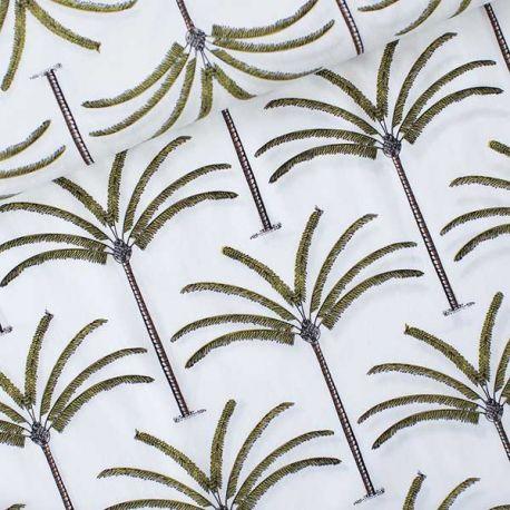 Coton lawn palms