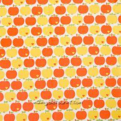 Enduit pommes jaune/orange