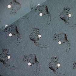 Sweat squirrel bleu