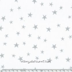 Imprimé constellation chantilly encre argent