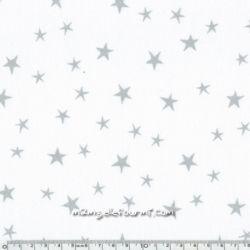 Imprimé constellation chantilly encre argent
