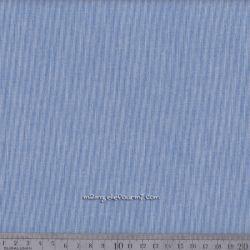 Coton rayé chemise bleu