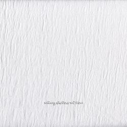 Batiste brodée blanche