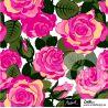 Jersey bio roza rose