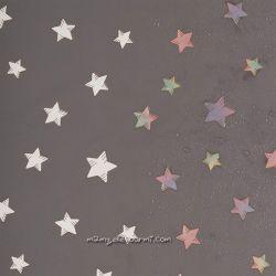 Softshell magique imprimé étoiles gris