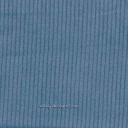 Velours grosses côtes bleu/gris