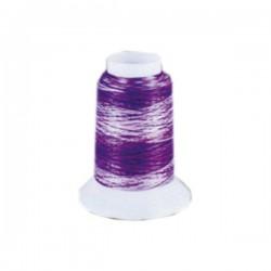 Fil mousse Wooly Nylon multicolore violet
