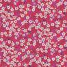 Liberty Mitsi hibiscus