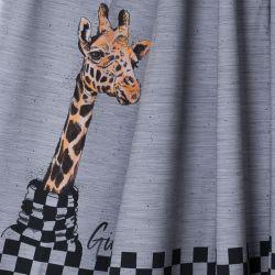 Jersey bio giraffe