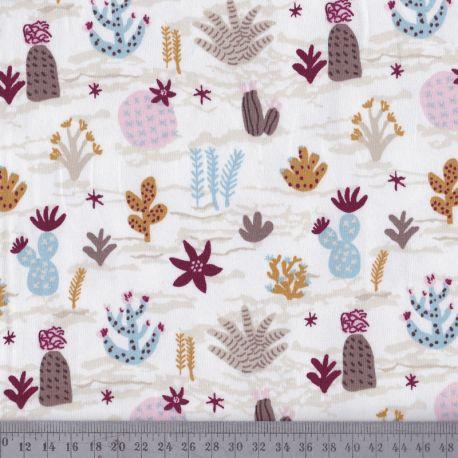 Jersey Kansas cactus