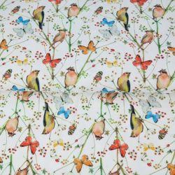 Popeline oiseaux