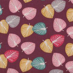 Coton cories prune