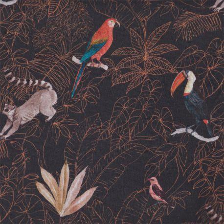 Coton lémurien