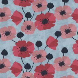 Jersey poppies ciel