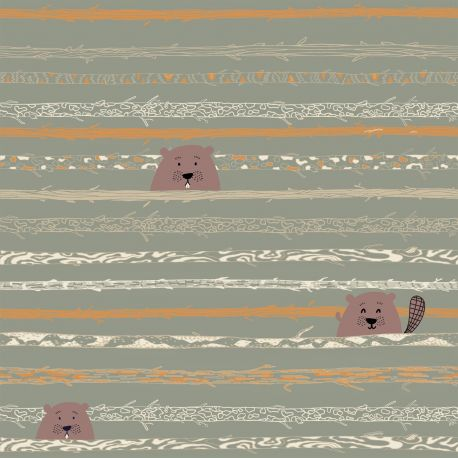 Popeline beaver's teeth and trees