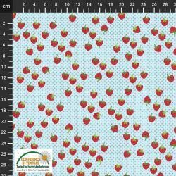 Jersey strawberries/dots bleu