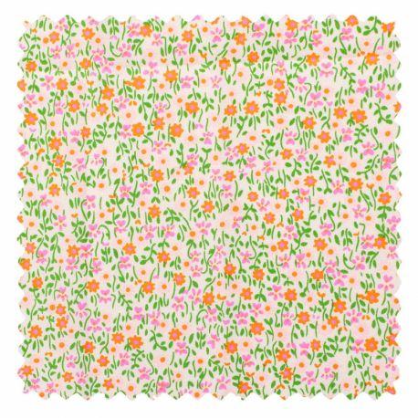 Coton mikko rose