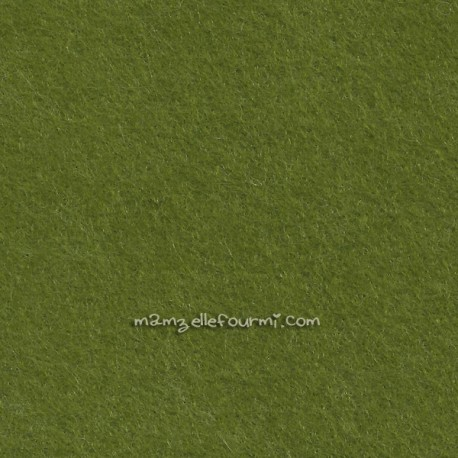 Feutrine lichen