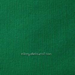 Jersey bio stretch vert